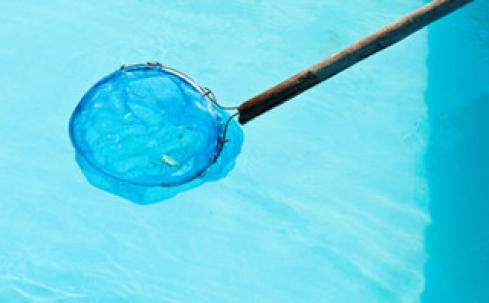 Entretien de piscine a angers